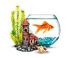 Зоотовары для Рыбок
